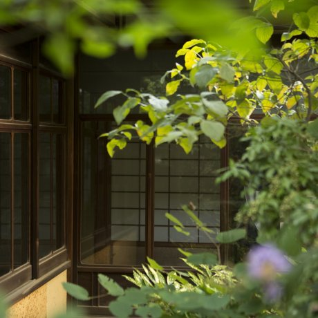Guest-house Nara Backpackers