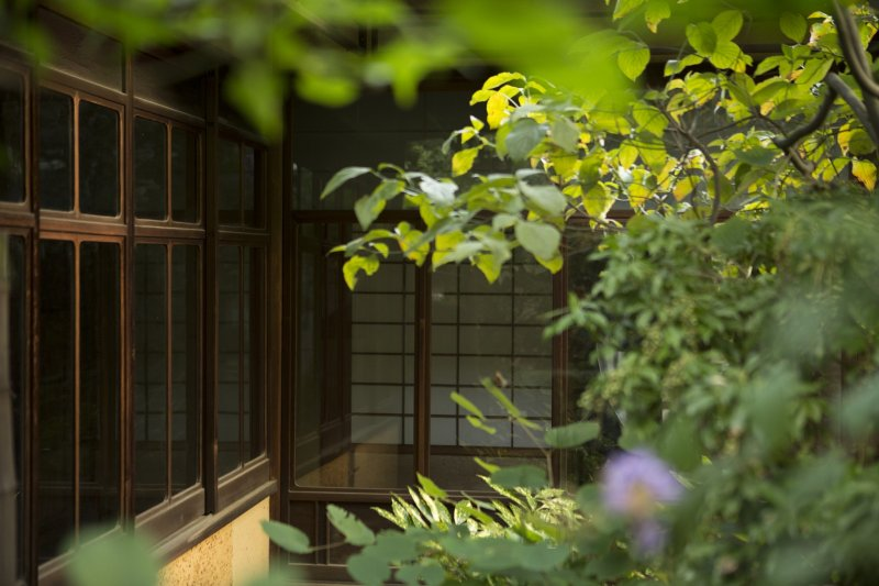 As the house encompasses the garden the building is at one with nature