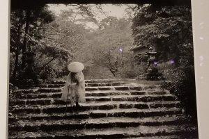 Mr. Okamoto was a great photographer