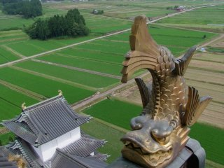 The castle is almost 60 meters high