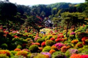 Shiofune Kannon-ji Temple