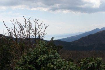 The nature of Hakone