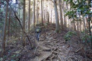 Hiking up Mount Jinba