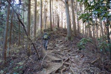 Climbing Mount Jinba