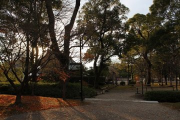 Garden of Toji in the twilight
