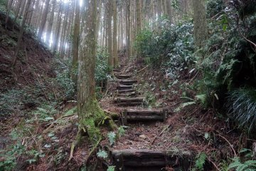 There are many stairs on the way to Kyozuka 17
