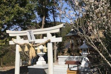 A little shrine near the plum orchards where farmers pray for a good harvest