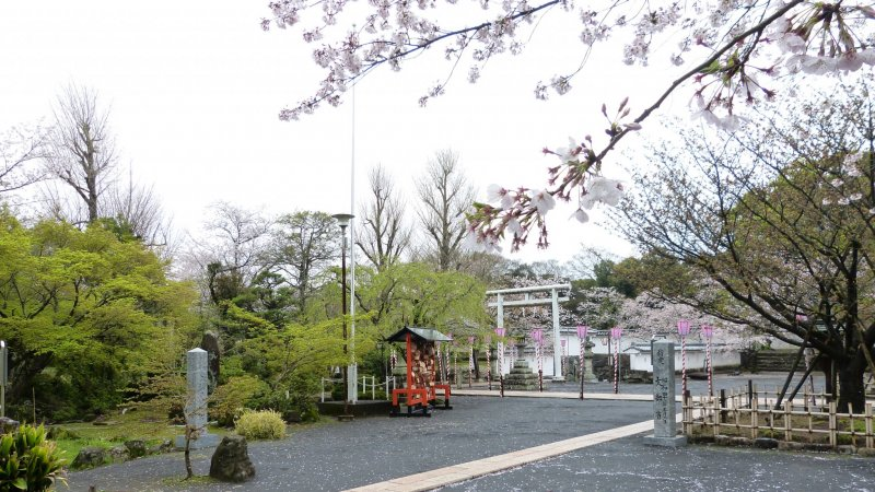The park is designated as one of Japan's Top 100 cherry blossoms spots