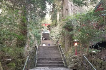 Going up the stairs at Hakone Shrine