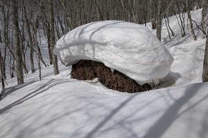 A snow hat