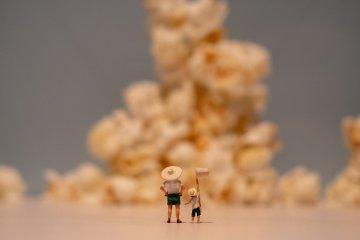 Miniature Life Exhibition: Fukui