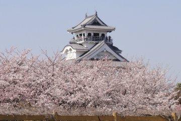 Hokoen and Nagahama Castle, Shiga