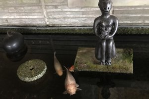 Search for mischievous Kappa. They are what Tono is famous for but there is much more to Tono!