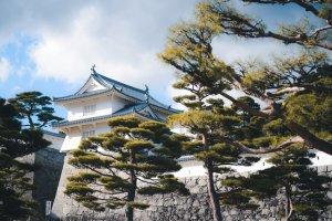Nihonmatsu Castle