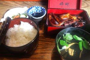Die Spezialität Yanagawas: gegrillter Aal (unagi)
