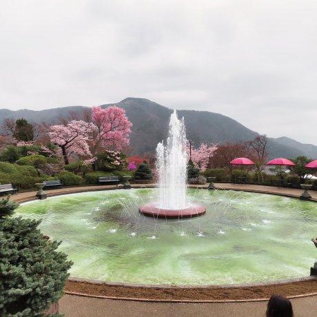 Hakone Spring 2021