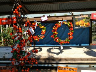 Pathway stall: left, hana nasu, dried Japanese eggplants on the vine; right, Halloween wreaths
