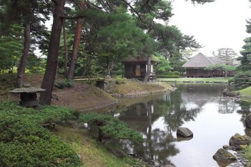 Another view along the pond