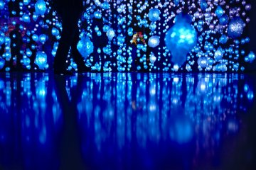 Pipilotti Rist Exhibition