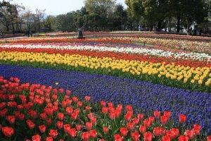 Kiso Sansen Park