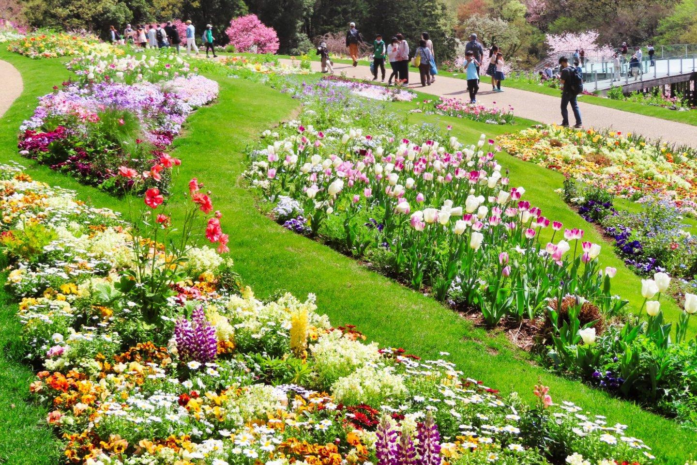 Satoyama Garden Flower Bed