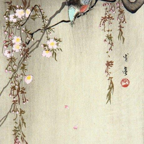 Watanabe Shotei: Brilliant Birds, Captivating Flowers