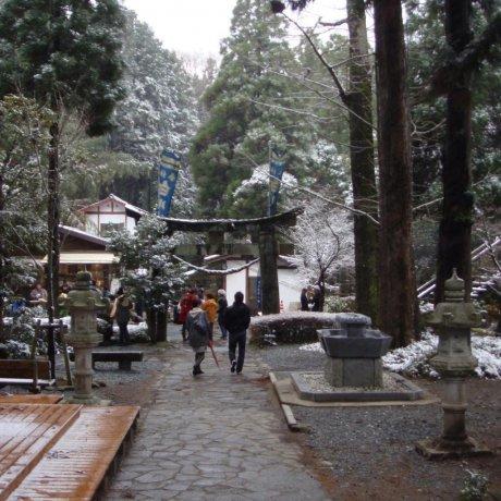 Shirakawa Spring