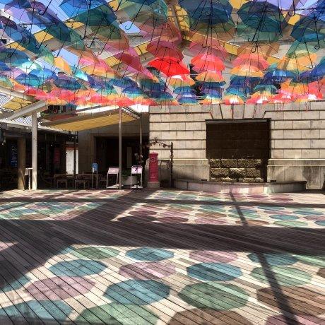 Matsue Umbrella Sky