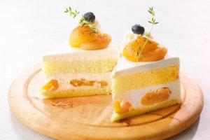 Cream cheese and apricot shortcake