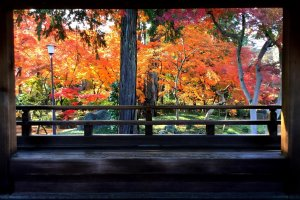 Kitain Temple in autumn