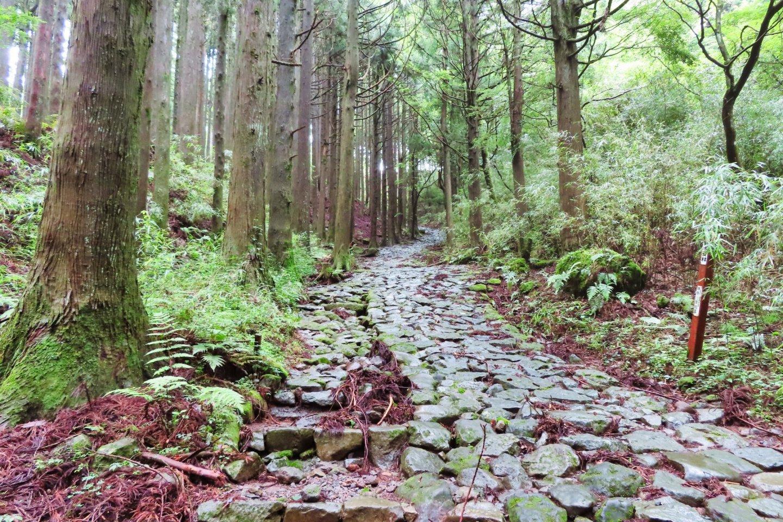 Old Tokaido Road