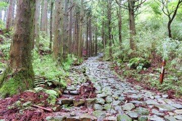 Old Tokaido Road Hike - Part 1