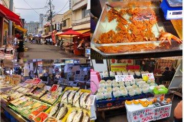 Exploring Hakodate Morning Fish Market