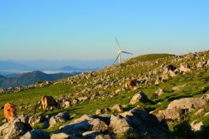 Wind power, natural power