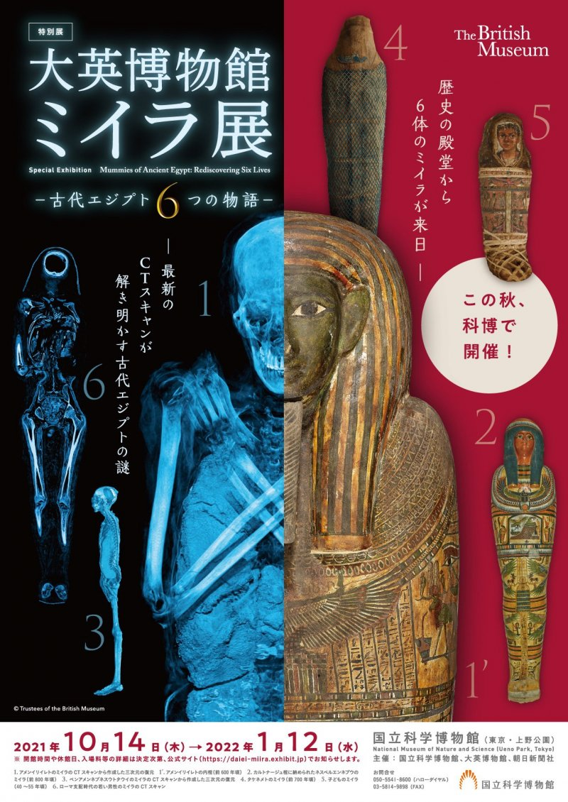 The event uses modern technology to help explore more about the lives of six mummies