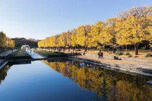 10 Autumn Color Destinations in Tokyo