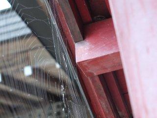 Spider web at shrine entrance