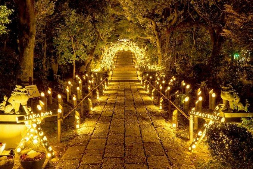 Around 1000 bamboo lights will decorate the grounds of Hana Biyori