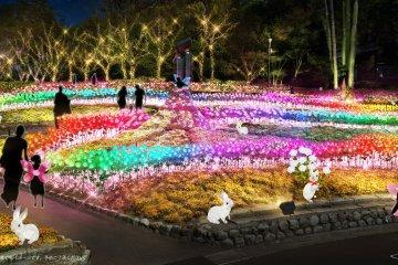Osaka Garden of Floral Culture Illuminations