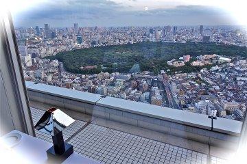 Stunning view of Shinjuku