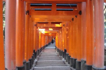 Getting to Know: Fushimi Inari Taisha