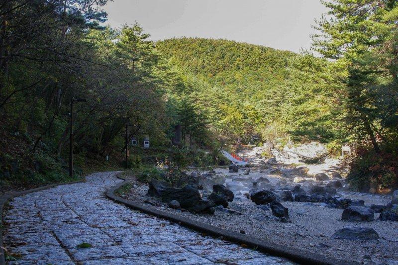 <p>ตื่นตาตื่นใจไปกับสิ่งมหัศจรรย์ทางธรรมชาติที่สวนไซ โนะ คะวะระ</p>
