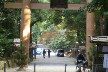 Giant torii at entrance to shrine