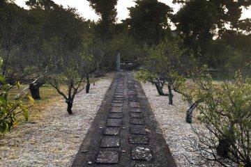 <p>Path leading through</p>
