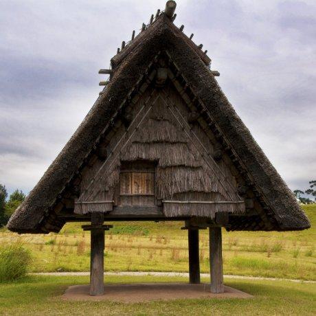 요시노가리 역사공원