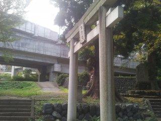 Shinkansen tracks right next to the shrine