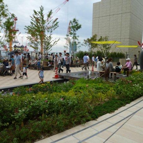 Osaka Station City's Hidden Garden