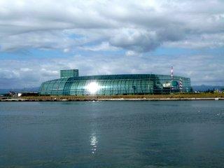 View of the aquarium from 'La La Mew'