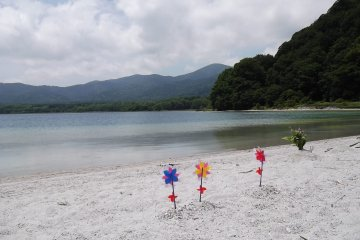 <p>Colorful pinwheels on the beach, flittering in the breeze</p>