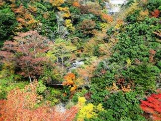 Tầm nhìn từ Cầu treo Uorooki Todoro